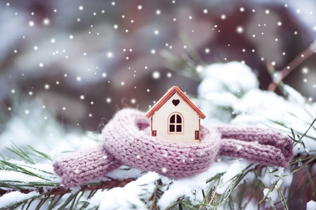 Winter House Shopping