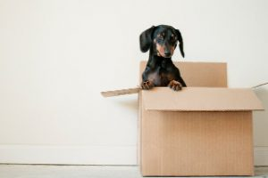 How to Find the Right Neighborhood When Moving